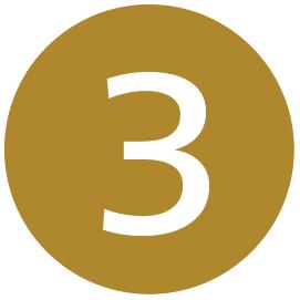 Icône d'itinéraire pour la Ligne 3 de l'O-Train