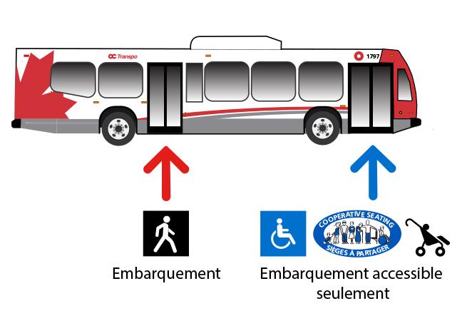 Vue transversale d'un autobus. Icône d'un piéton avec une flèche indiquant les portes arrière. Symbole d'accès et icône d'une poussette avec une flèche indiquant les portes avant et le texte: embarquement accessible seulement.